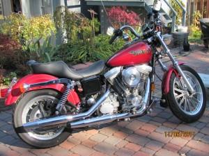Motorcycle & Mustang 009